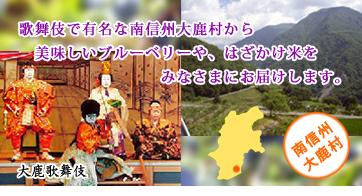 大鹿村のご紹介