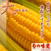 北海道産とうもろこし「ゴールドラッシュ」