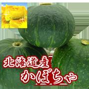 北海道産「かぼちゃ」