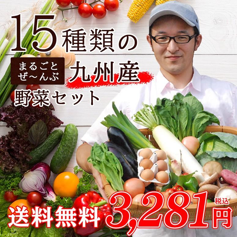 15種類の九州産野菜セット