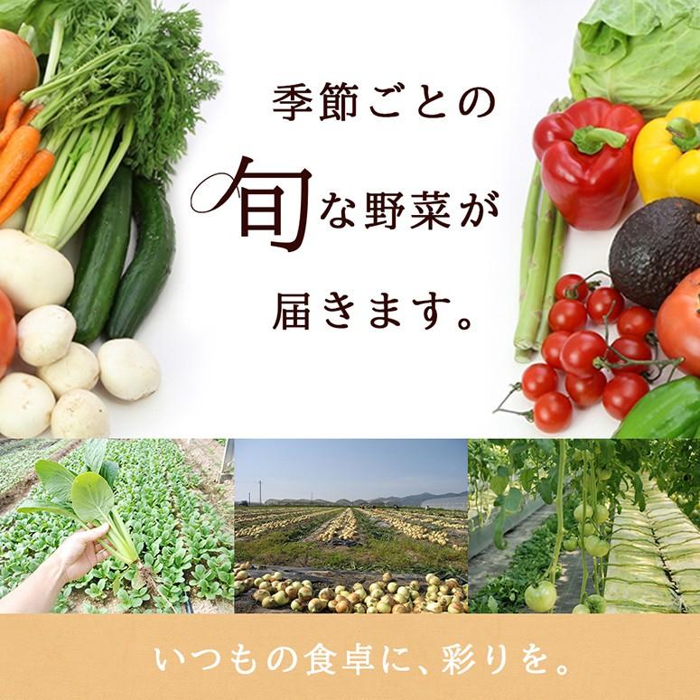 季節ごとの旬なお野菜