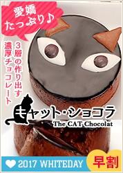 キャットチョコレートケーキ