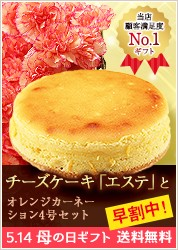 エステチーズケーキ