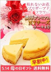 濃厚NYチーズケーキ