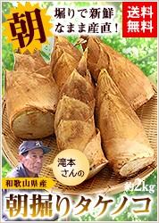 滝本さんの朝掘りタケノコ約2kg