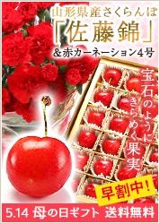 赤カーネーション4号&さくらんぼ