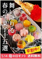 造花&佐保姫(15種の生菓子)