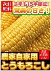 ゴールドラッシュ15本