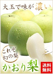 農家自家用かおり梨2.5kg