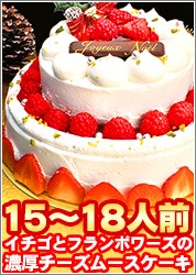 パーティー用2段デコレーションケーキ