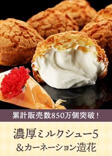 濃厚ミルクシュー5&カーネーション造花