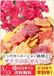 ピンクカーネーション4号鉢植えと選べるスイーツギフト