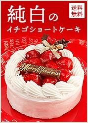 純白のいちごショートケーキ