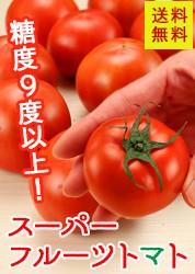 スーパーフルーツトマト約1kg