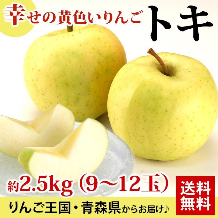 幸せの黄色いりんごトキ約2.5kg(9〜12玉)りんご王国・青森県からお届け♪送料無料
