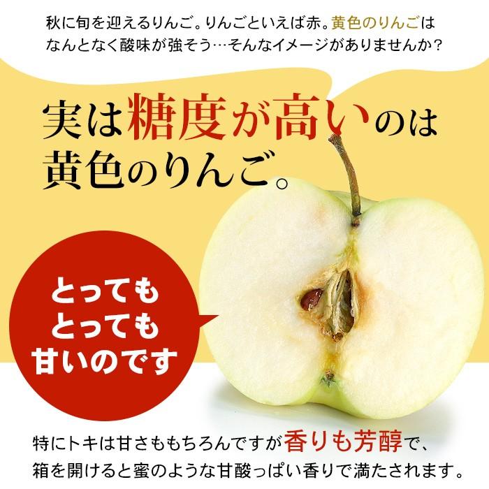 実は糖度が高いのは黄色のりんご。とってもとっても甘いのです。特にトキは甘さももちろんですが香りも芳醇で、箱を開けると蜜のような甘酸っぱい香りで満たされます。