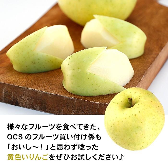 様々なフルーツを食べてきた、OCSのフルーツ買い付け係もおいし〜!と思わず唸った黄色いりんごをぜひお試しください♪