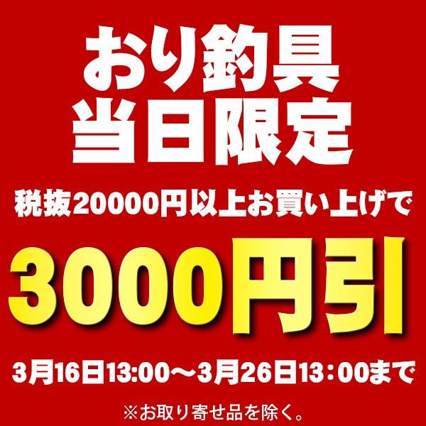 1回限定、税抜2万円(税込21600円)以上お買い上げで3000円OFFクーポン