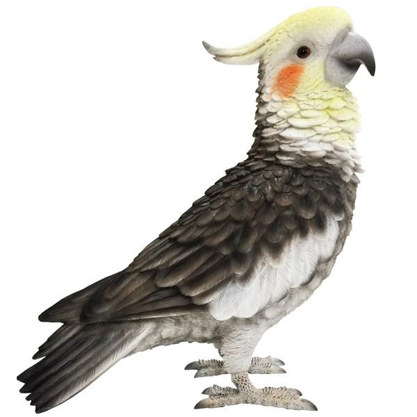 バーディ ビル オカメインコ 小鳥のオブジェ 置物 インテリア