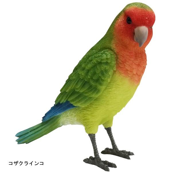 バーディ ビル コザクラインコ 小鳥のオブジェ 置物 インテリア
