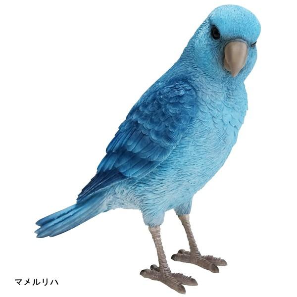 バーディ ビル マメルリハ 小鳥のオブジェ 置物 インテリア