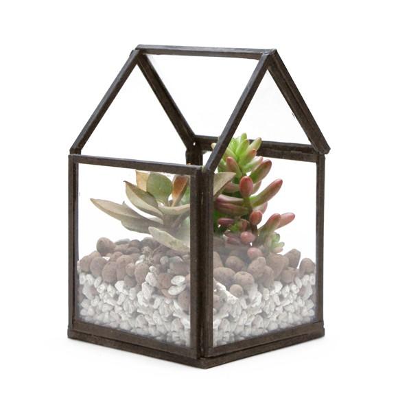 ハウス テラリウム ミニ おしゃれ ガラスケース プランター 家型