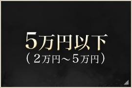 5万円以下(2万円〜5万円)
