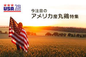アメリカ家禽