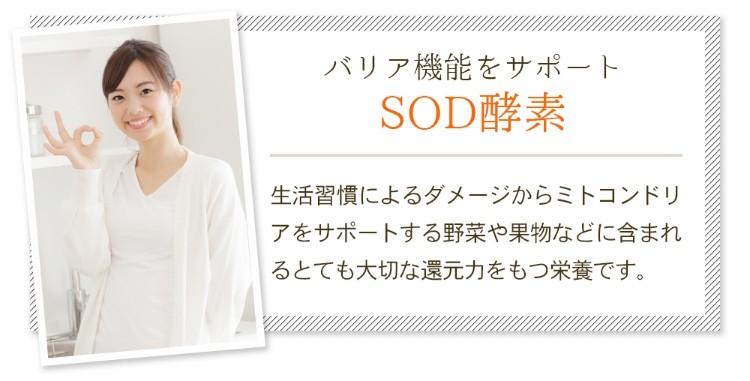 バリア機能をサポート「SOD酵素」