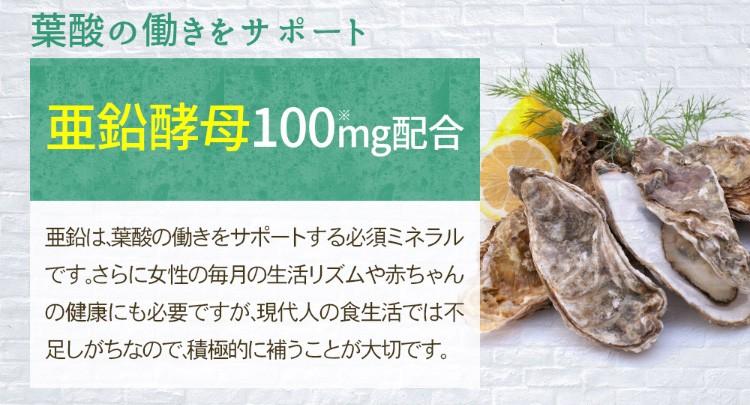葉酸の働きをサポート亜鉛酵母 100mg配合