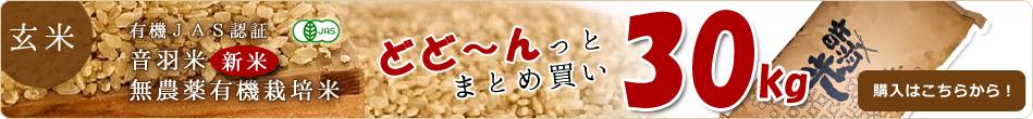 有機JAS認定 音羽米 無農薬玄米どどーんと30kg販売はじめました