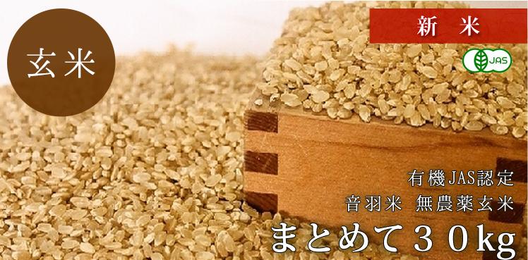 有機JAS認定 音羽米 無農薬玄米 まとめて30kg