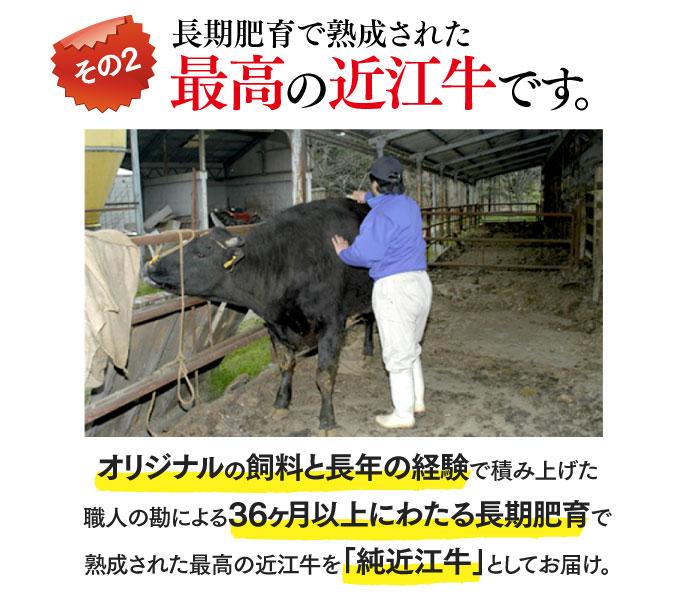 長期肥育で熟成された最高の近江牛です。オリジナルの飼料と長年の経験で積み上げた職人の勘による36ヶ月以上にわたる長期肥育で熟成された最高の近江牛を「純近江牛」としてお届け。