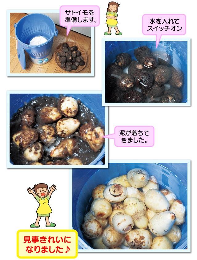 サトイモ洗いに挑戦!!