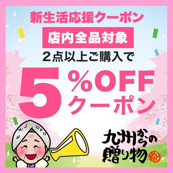 【当店全品対象】2点以上ご購入で5%OFFクーポン配布中!