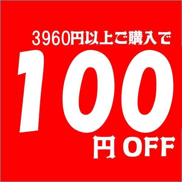 3960円以上ご購入で100円OFF
