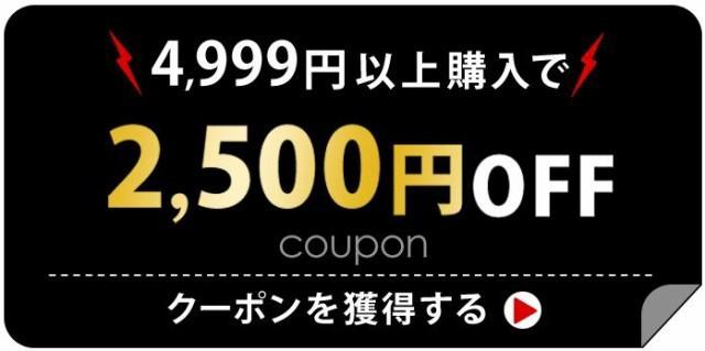税込4,999円以上で2,500円OFFクーホ゜ン!