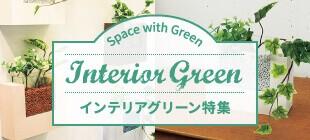Interior Green インテリアグリーン特集