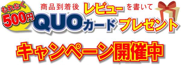 QUOカード 500円分プレゼント