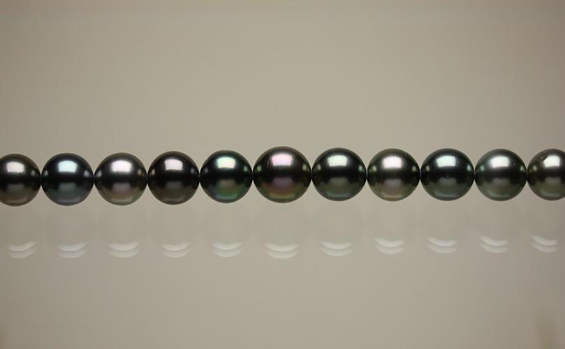 <11.6mm>タヒチ産黒蝶真珠ネックレス<マルチカラー><マルチ> スマホアプリも充実で毎日どこからでも気になる商品をその場でお求めいただけます 6mm>タヒチ産黒蝶真珠ネックレス<マルチカラー><マルチ>:0008なら