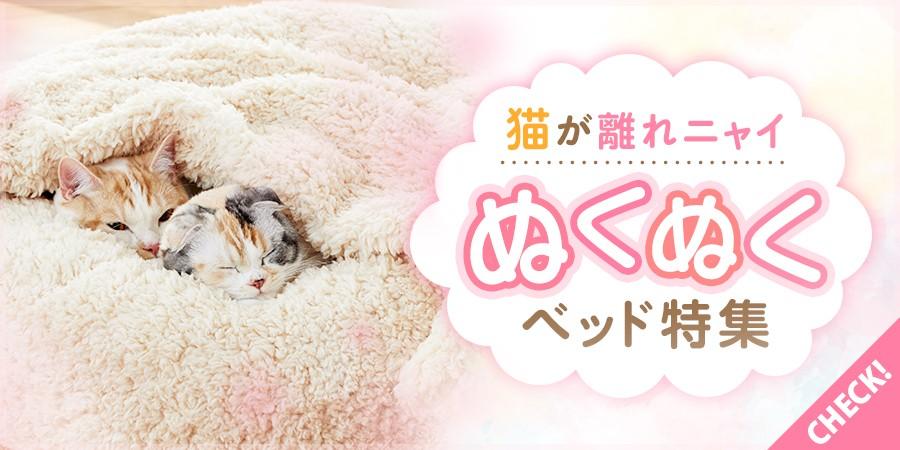 冬猫ベッド