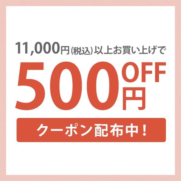 全品対象!10,000円(税抜)以上のお買上げで使える100円クーポン