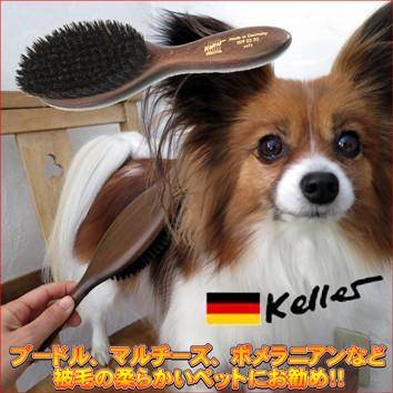 柔らかい毛のペットに最適なブラシ
