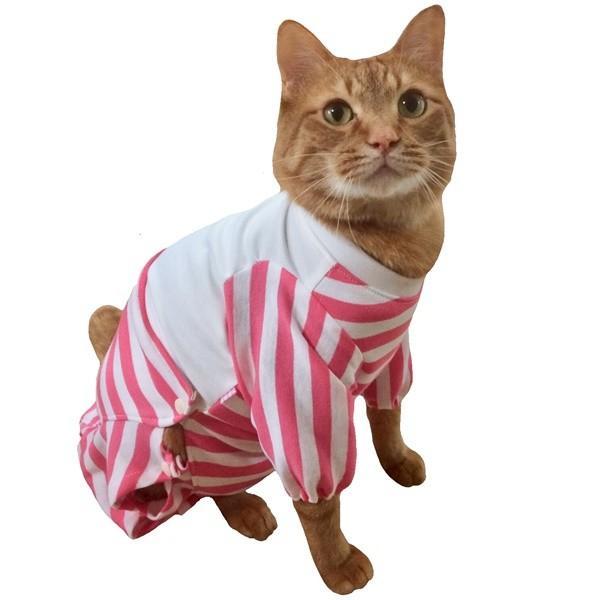 猫用術後服 術後ウェア 脱毛 保護服 長袖パンツ M|petanimals|16