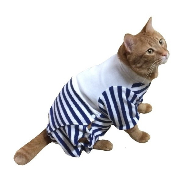 猫用術後服 術後ウェア 脱毛 保護服 長袖パンツ M|petanimals|15