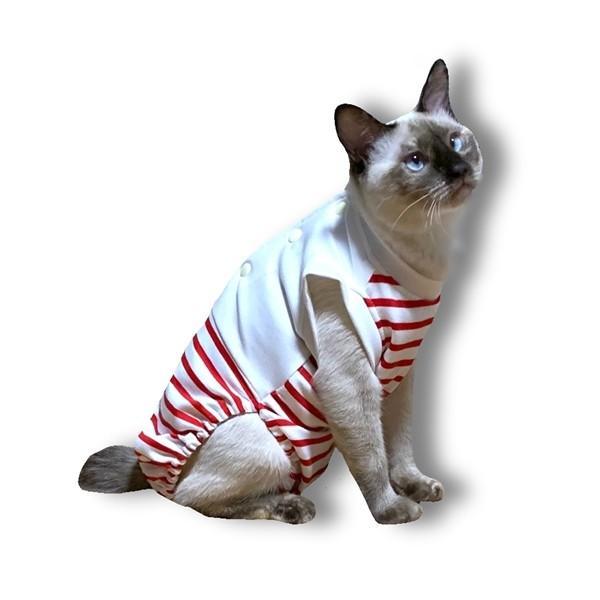 猫用術後服 脱毛保護 術後ウェア M petanimals 14