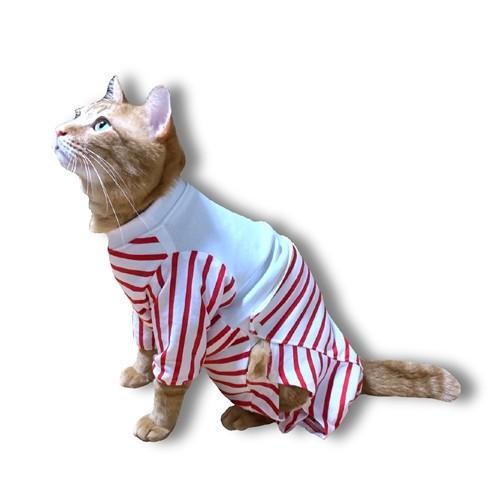 猫用術後服 術後ウェア 脱毛 保護服 長袖パンツ M|petanimals|14