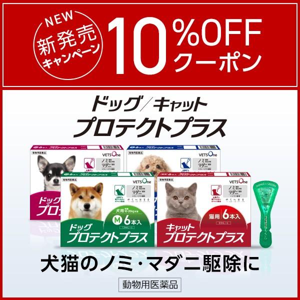 ベッツワンプロテクトプラス(ノミ・マダニ駆除薬)のご購入に使える10%OFFクーポン