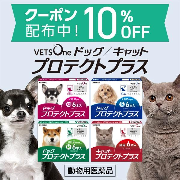 ベッツワンプロテクトプラス(ノミ・マダニ駆除薬)対象商品のご購入に使える10%OFFクーポン