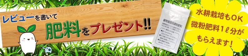 レビューを書いて肥料プレゼント!!